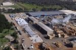 Australia's largest continuous timber kiln opened