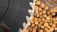 Sudden closure of NZ sawmill