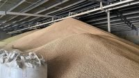 Fonterra's first wood pellet-fuelled plant ready