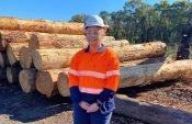 Profile - Women in timber