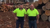 South Australian sawmill struggling to source logs and could close