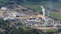 Norske Skog reviewing Tasman mills future