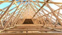 Latest quarterly Timber Market Survey report released