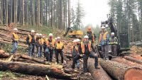 New sawmilling course set up in B.C.
