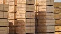 Mt Gambier sawmill to be sold